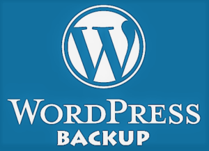 Website backup: how to perform it correctly and how to store it